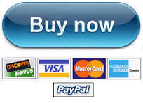 PayPal Buy Now2