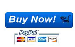 PayPal Buy Now3